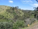 Brownhill Creek, Belair, SA