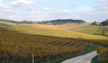 The Lane Winery, Adelaide Hills