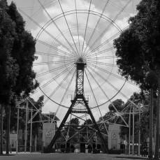 Adelaide Showground