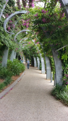 South Bank Walkway