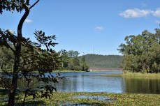 Across the reservoir to Mt Coot-tha